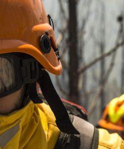 Máscara De Proteção Facial / Cógulas Florestais